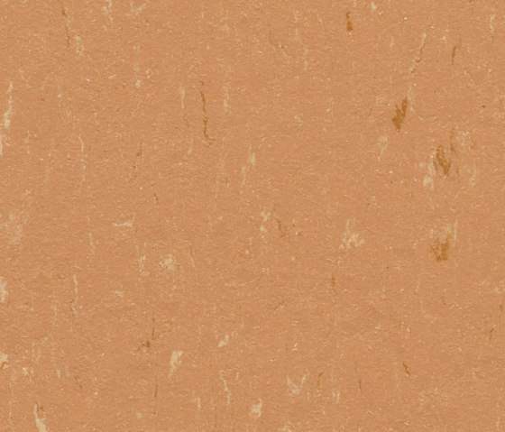 Marmoleum Piano fox by Forbo Flooring | Linoleum rolls