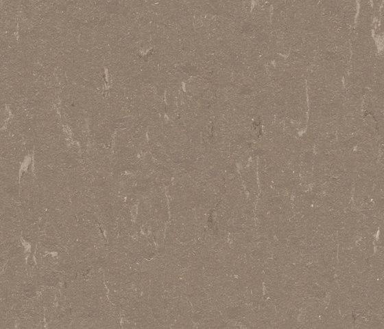 Marmoleum Piano otter di Forbo Flooring | Pavimentazione linoleum