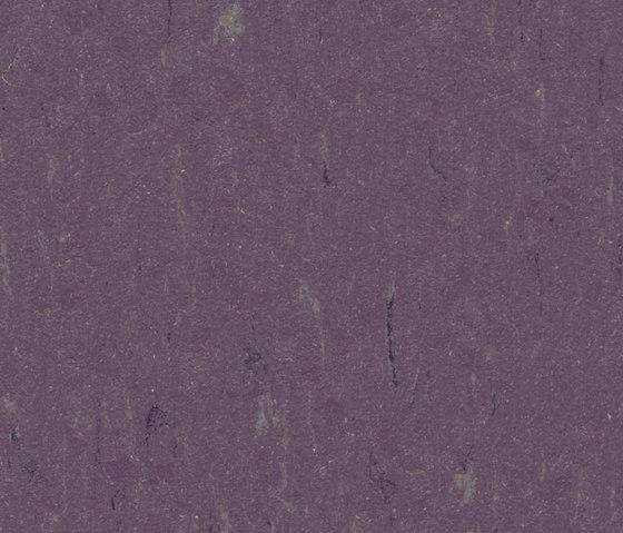 Marmoleum Piano thistle di Forbo Flooring | Pavimentazione linoleum
