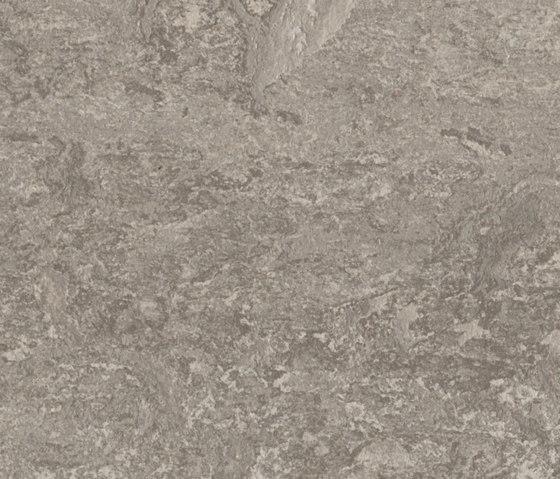 Marmoleum Real serene grey by Forbo Flooring | Linoleum flooring