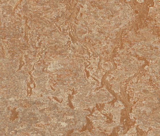 Marmoleum Real shitake by Forbo Flooring   Linoleum flooring