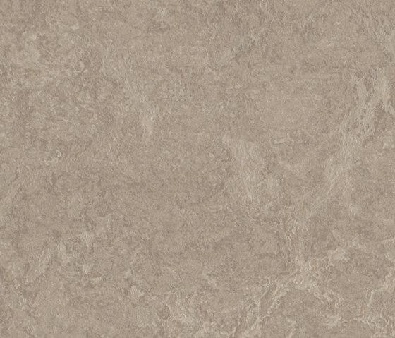Marmoleum Real sparrow by Forbo Flooring   Linoleum flooring
