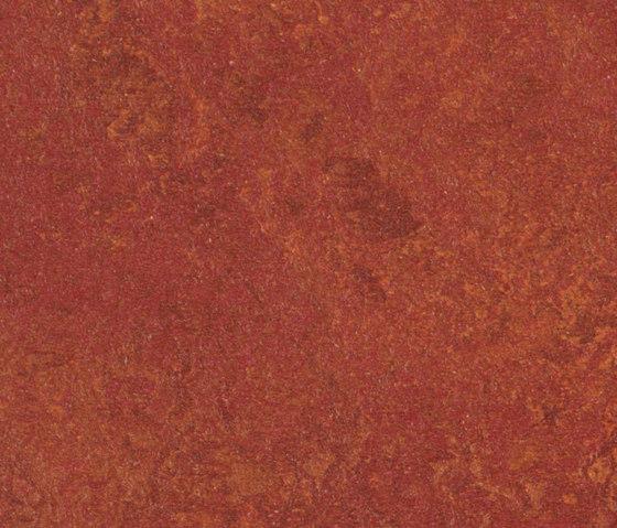 Marmoleum Real henna di Forbo Flooring | Pavimenti linoleum