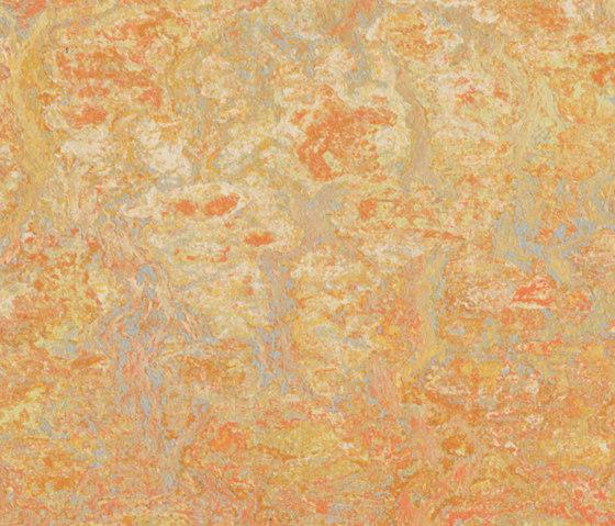 Marmoleum Vivace sunny day by Forbo Flooring | Linoleum rolls
