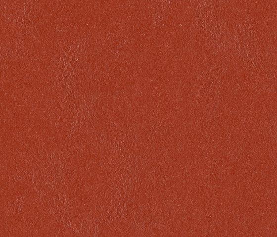 Marmoleum Walton | Cirrus Berlin red by Forbo Flooring | Linoleum rolls