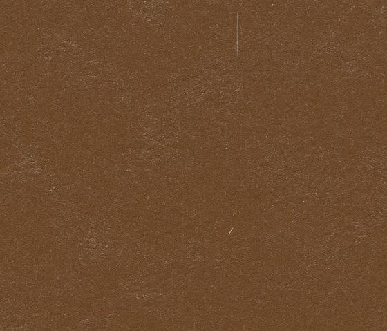 Marmoleum Walton   Cirrus original brown by Forbo Flooring   Linoleum rolls