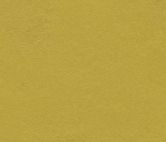Marmoleum Walton | Cirrus yellow moss by Forbo Flooring | Linoleum rolls