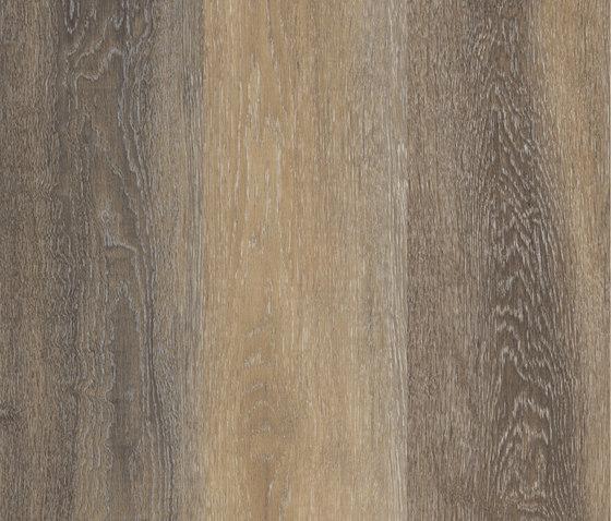 Allura Click multicolor light oak di Forbo Flooring | Lastre plastica