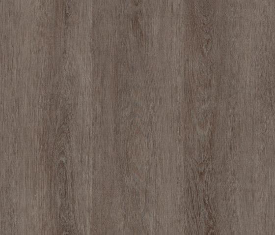 Allura Click green grey oak di Forbo Flooring | Lastre plastica