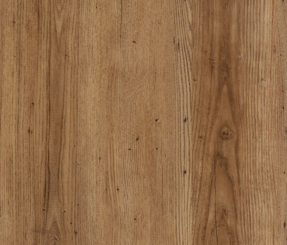 Allura Click linear oak by Forbo Flooring | Synthetic panels