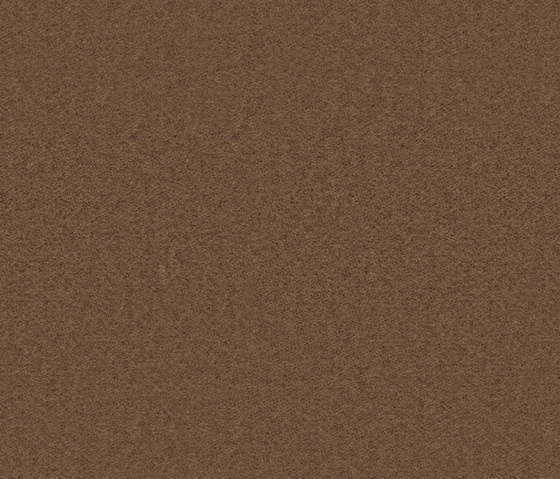 Needlefelt Showtime Nuance taupe by Forbo Flooring   Wall-to-wall carpets