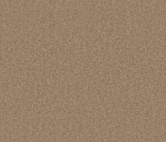 Needlefelt Showtime Nuance grège by Forbo Flooring   Wall-to-wall carpets