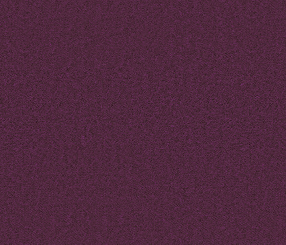 Needlefelt Showtime Nuance violet by Forbo Flooring | Wall-to-wall carpets