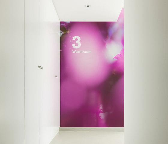 Flora Color | 31.097.1 | Foto von ornament.control | Holz Platten