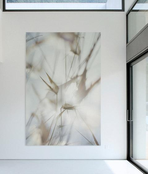 Flora Plus | 31.094.1 | Foto von ornament.control | Holz Platten