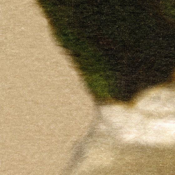 Artémis LI 413 05 by Elitis | Drapery fabrics