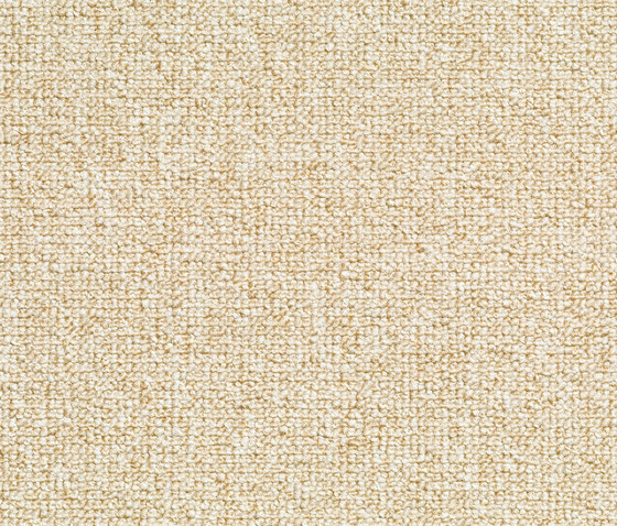 Concept 509 - 115 by Carpet Concept | Wall-to-wall carpets