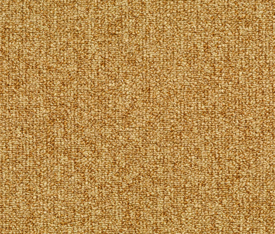 Concept 509 - 142 by Carpet Concept | Wall-to-wall carpets