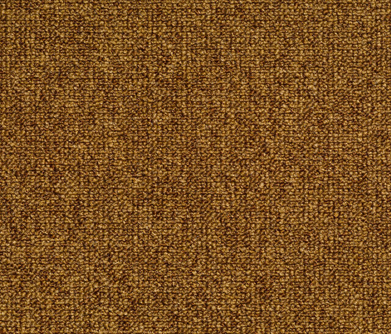 Concept 509 - 160 by Carpet Concept | Wall-to-wall carpets