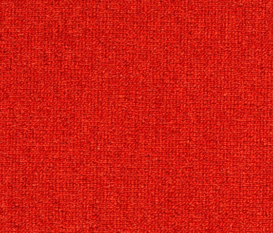 Concept 509 - 236 by Carpet Concept   Wall-to-wall carpets