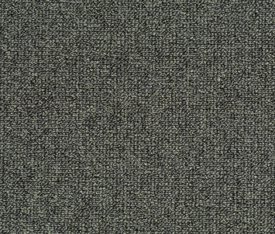 Concept 509 - 306 by Carpet Concept | Wall-to-wall carpets