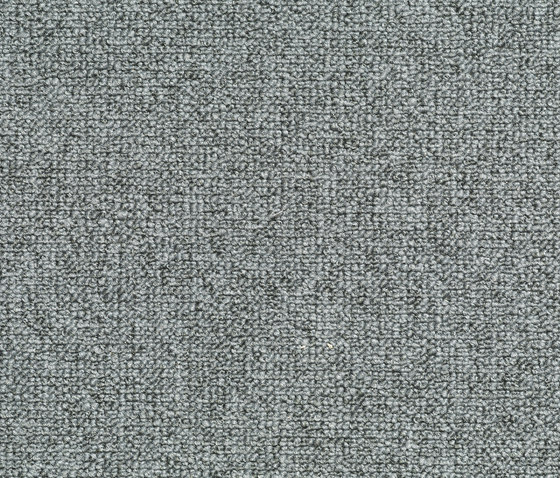 Concept 509 - 307 by Carpet Concept | Wall-to-wall carpets