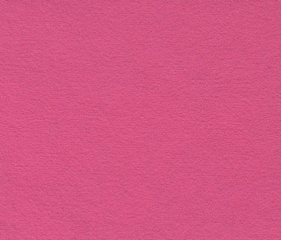 FINETT FEINWERK pure | 753501 by Findeisen | Wall-to-wall carpets