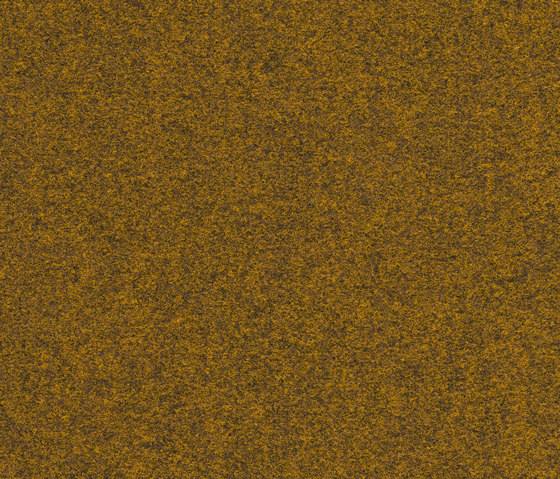 FINETT VISION classic | 200124 by Findeisen | Wall-to-wall carpets