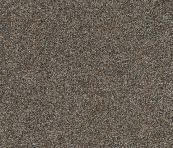 FINETT VISION classic | 400126 by Findeisen | Wall-to-wall carpets
