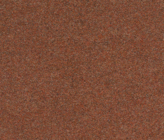 Finett Vision color | 400132 by Findeisen | Wall-to-wall carpets
