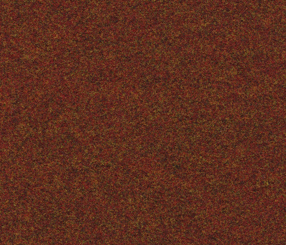 FINETT VISION classic | 500134 by Findeisen | Wall-to-wall carpets