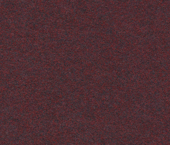Finett Vision color | 500140 by Findeisen | Wall-to-wall carpets