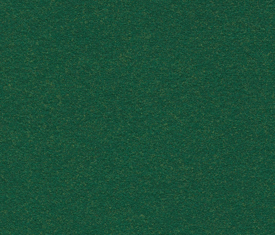 Finett Vision color | 600114 by Findeisen | Wall-to-wall carpets