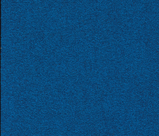 Finett Vision color | 700109 by Findeisen | Wall-to-wall carpets