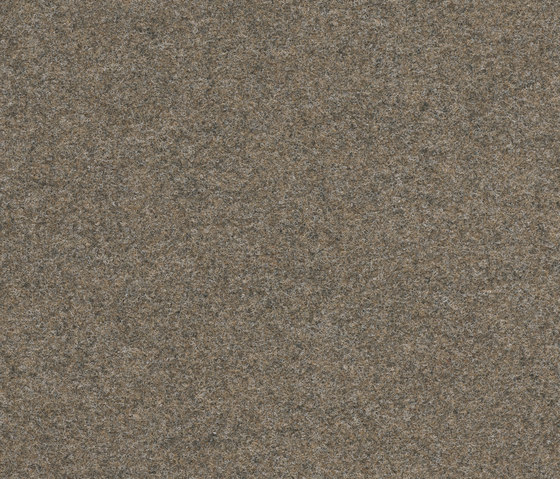 Finett Vision color | 800151 by Findeisen | Wall-to-wall carpets