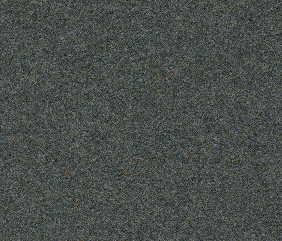 Finett Vision color | 800156 by Findeisen | Wall-to-wall carpets