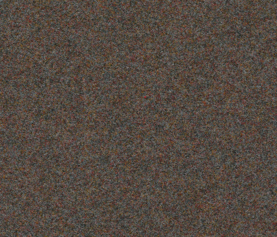 Finett Vision color | 800157 by Findeisen | Wall-to-wall carpets