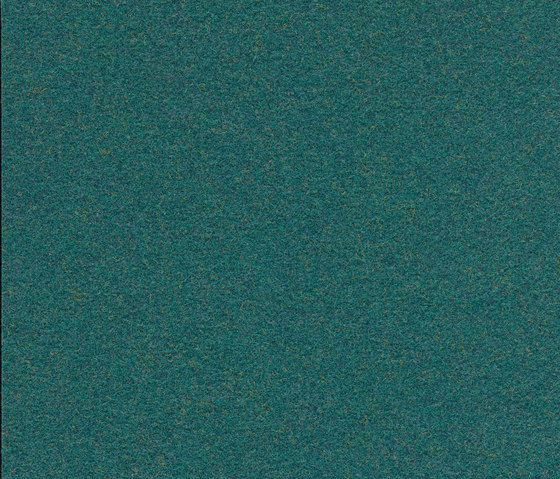Finett Vision color neue Farben | 600168 by Findeisen | Wall-to-wall carpets