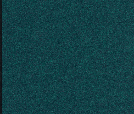 FINETT VISION classic | 600169 by Findeisen | Wall-to-wall carpets