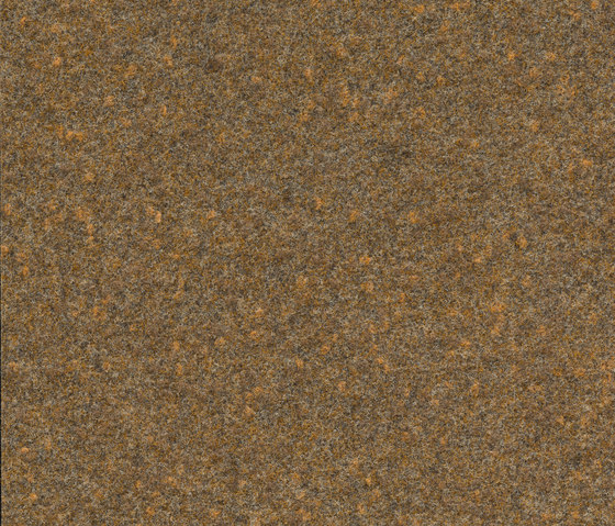 FINETT VISION focus | 105523 by Findeisen | Wall-to-wall carpets