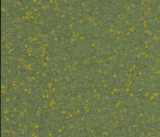 FINETT VISION focus   605512 by Findeisen   Wall-to-wall carpets