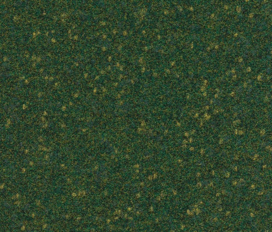 FINETT VISION focus | 605516 by Findeisen | Wall-to-wall carpets