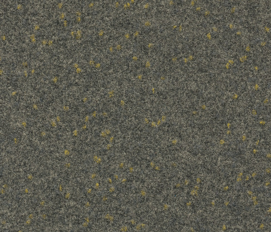 FINETT VISION focus   805553 by Findeisen   Wall-to-wall carpets