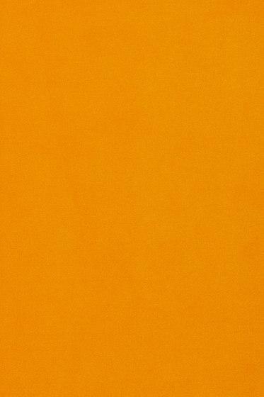 Star 2 442 by Kvadrat | Drapery fabrics