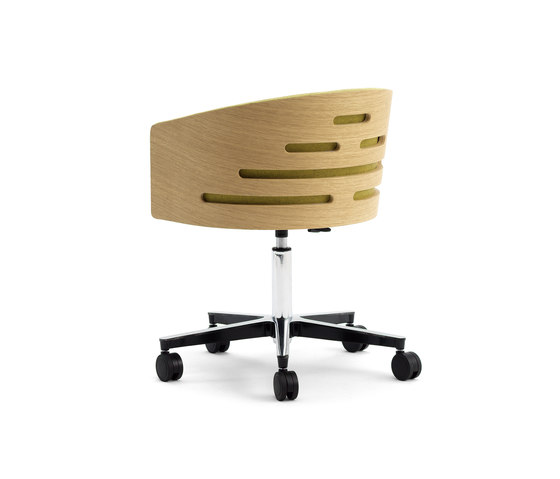 ALBERT TREE | SBR by Accento | Conference chairs