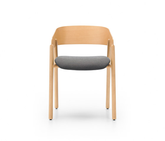 Mava by Punt Mobles | Chairs