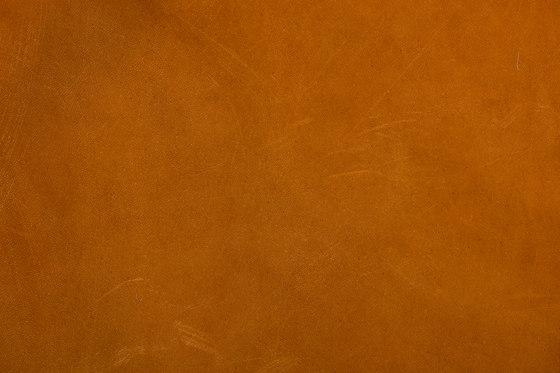 Tuscany Brandy de Alphenberg Leather | Carrelage