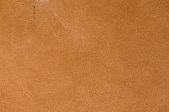 Tuscany Sabbia by Alphenberg Leather | Leather tiles