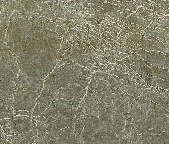 Pampas Dolphin by Alphenberg Leather | Leather tiles