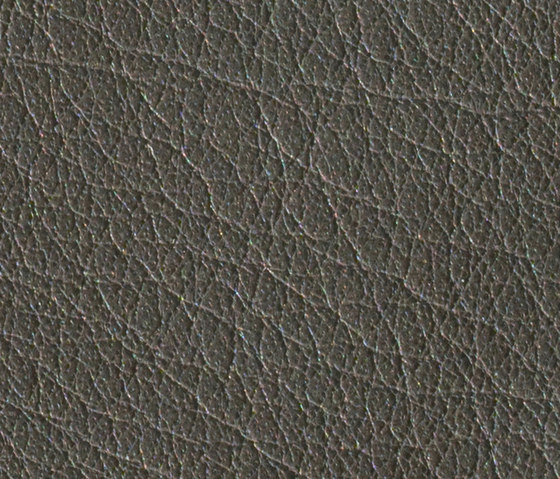 Gusto Anthracite by Alphenberg Leather | Natural leather